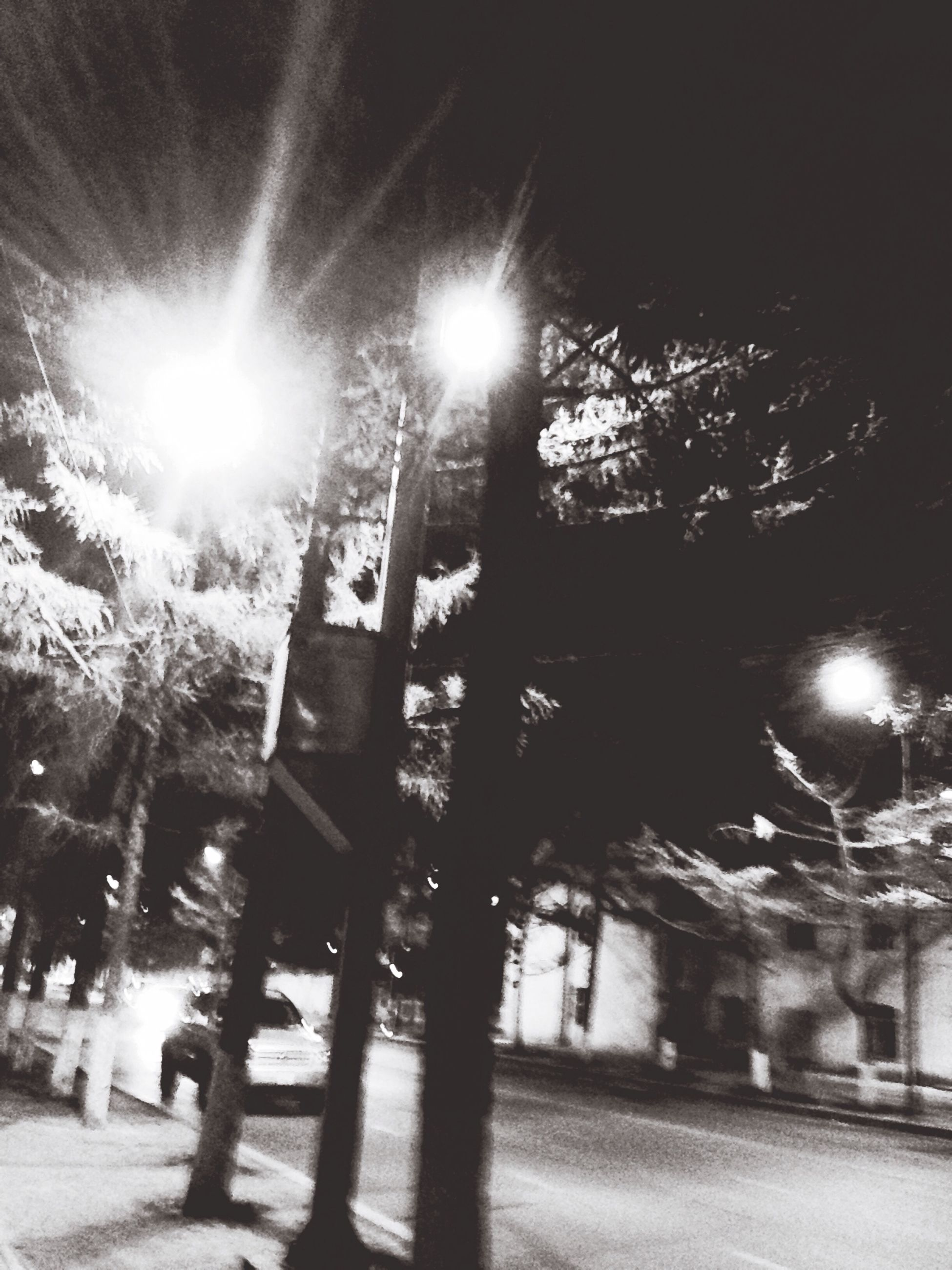 building exterior, architecture, built structure, tree, lens flare, sunlight, sun, sunbeam, illuminated, night, low angle view, street light, lighting equipment, city, outdoors, building, shadow, sunny, sky, street