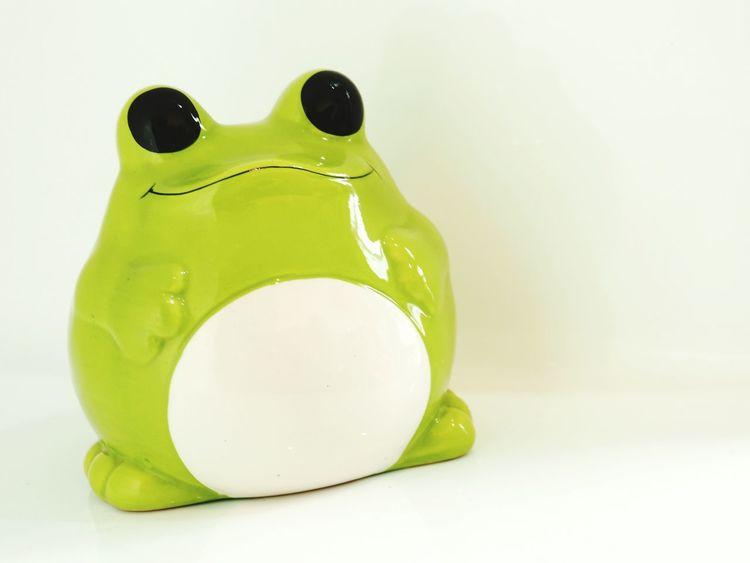 No People Close-up White Background Savings Money Box Bullfrog Cartoon Cute Frog Frog Cute Kero Piggy Bank Studio Shot
