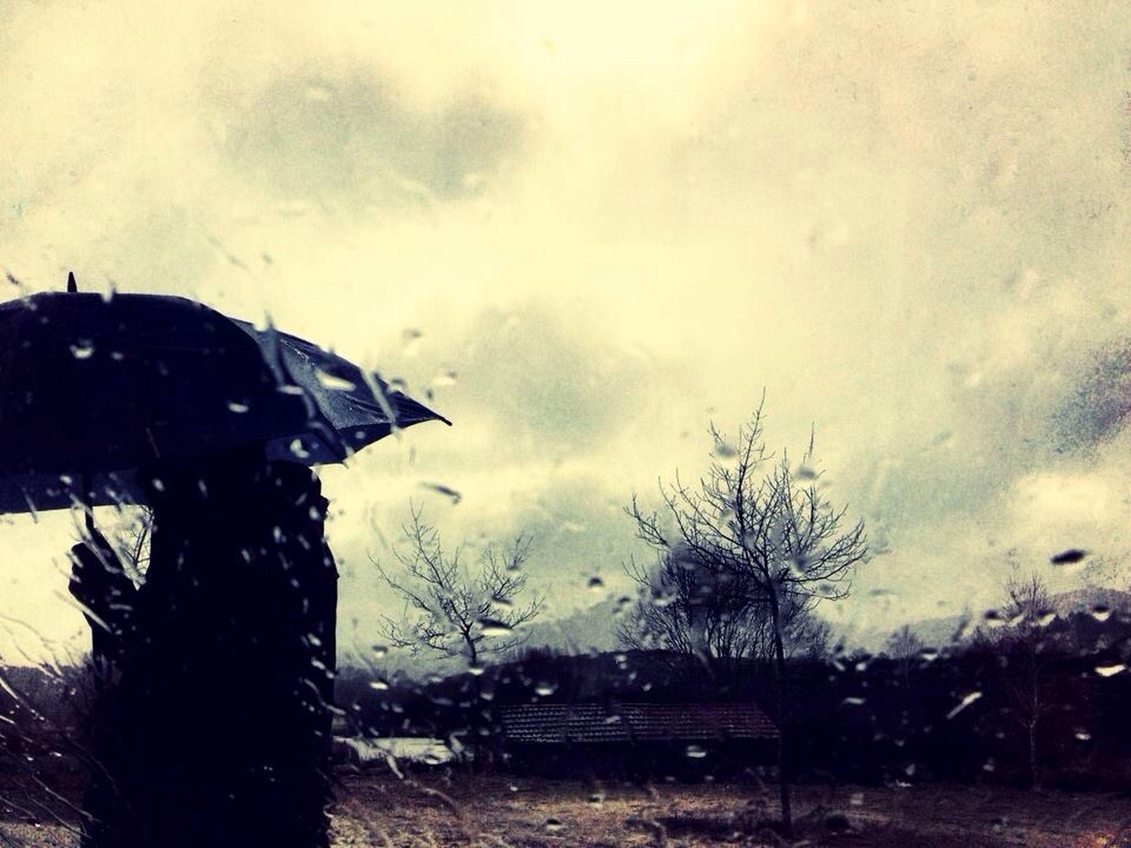 sky, wet, weather, car, transportation, window, rain, glass - material, mode of transport, land vehicle, transparent, drop, water, cloud - sky, tree, silhouette, indoors, dusk, season, cloudy