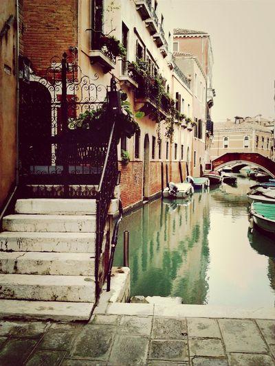 Venice Takin Photos City View