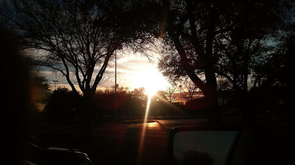Car Tree Water Sun Transportation Sunlight No People Sunset Nature Outdoors Day Sky