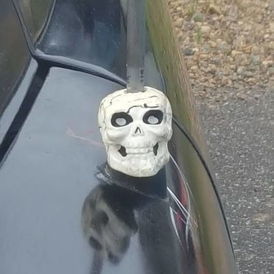 Skull decor Spooky Horror Day Human Body Part Anthropomorphic Face Close-up Skull Decor Classic Car