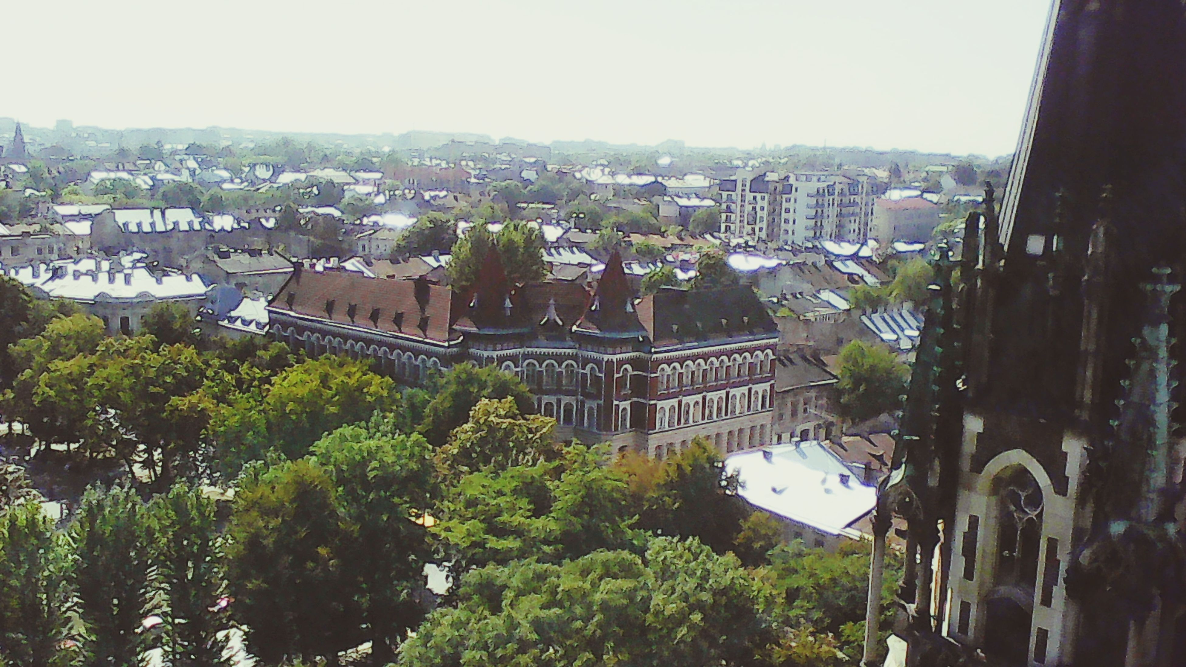 tree, architecture, built structure, building exterior, high angle view, city, cityscape, crowded, clear sky, city life, sky, day, canal, green color, no people, outdoors, residential district, mountain, urban scene, town, history, mountain range