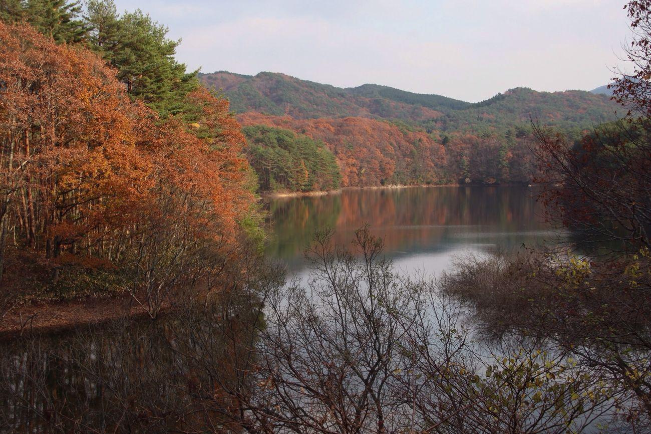 紅葉 聖湖