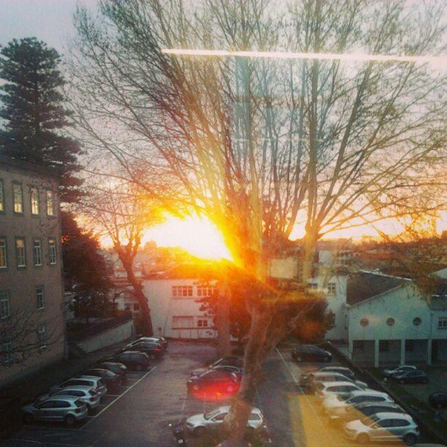 vista do escritório Sunset Sun Tree Car Cars Pordosol Pordosol Sol Escritório Optimusprimaverasound Céu Sky