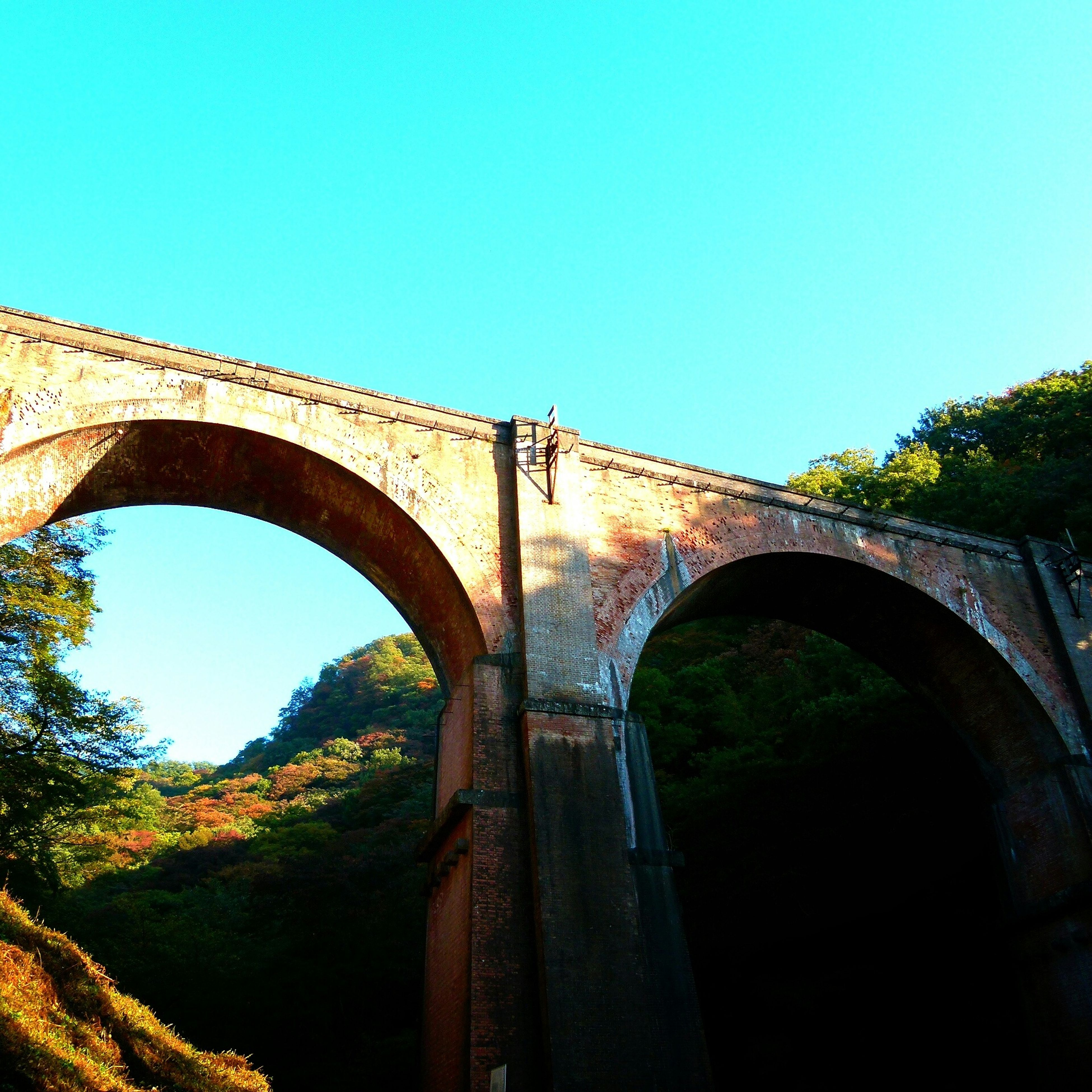 arch, architecture, built structure, clear sky, connection, bridge - man made structure, tree, low angle view, arch bridge, bridge, engineering, copy space, building exterior, blue, transportation, outdoors, arched, archway, day, no people