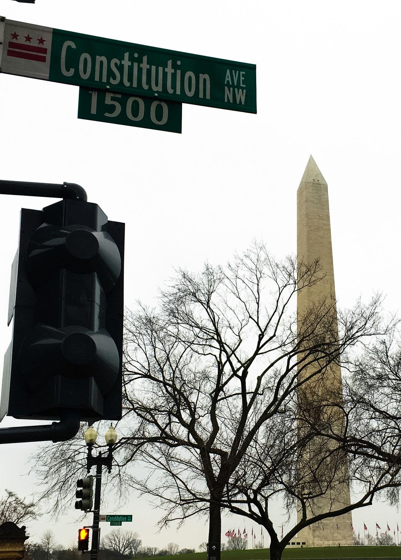 Travel Photography Washington, D. C. USA Constitution Avenue Washington Monument Tree Branches