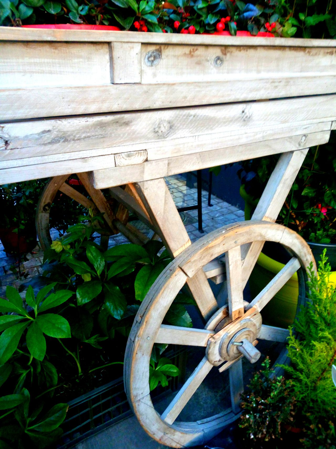 Old trolley for flowers - старая тележка для цветов Damaged Day No People Old Old Trolley For Flowers Outdoors Plant Trolley Wheel Wood - Material Wooden Worn Out старая тележка для цветов