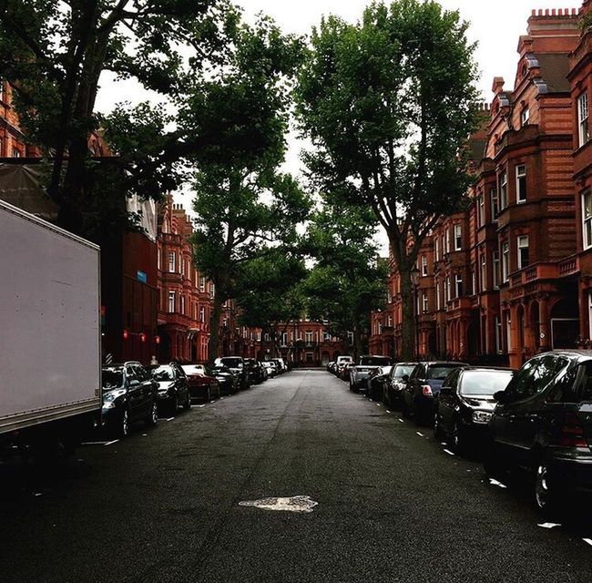 Could be Out of a movie Road London Beautiful Street Warm Tree City Architecture
