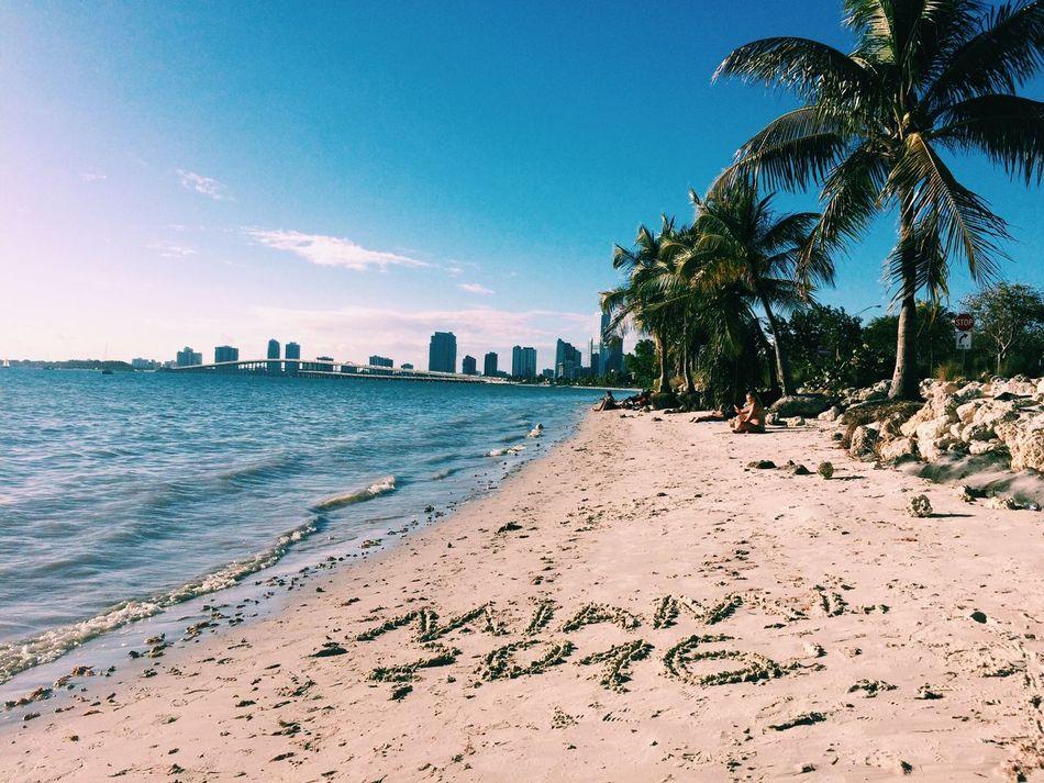 Beautiful stock photos of miami, Beach, Beauty In Nature, Blue, City