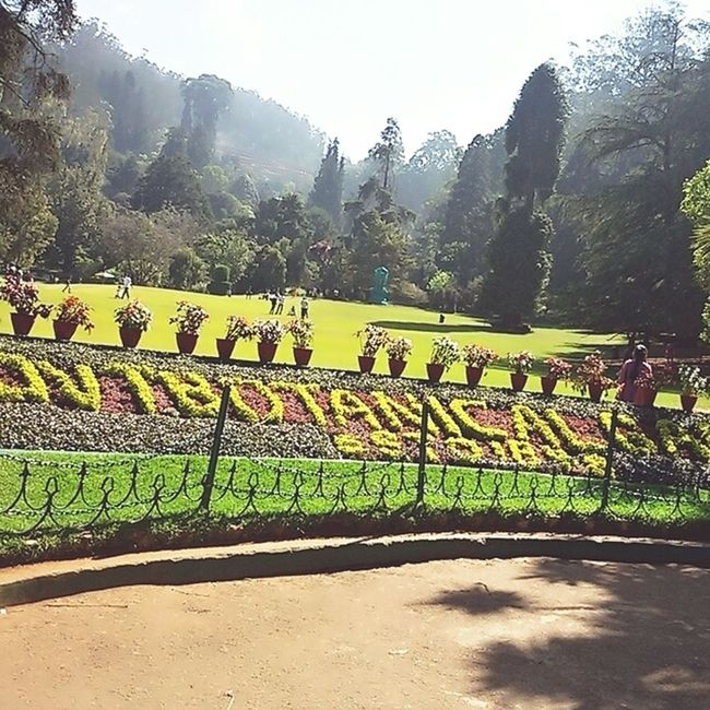 Botanical Gardens Front View Super Cool Paradise On Earth Tamilnadu, India Ootyclimate Famous Place Travel Destinations Photooftheday Summertime Love Traveling 😃👍 Amazing Nature Changing Climate Good To Stay Eyeem Facebook Adorable Beautyful  In And Out EyeEm Gallery EyeEm Best Shotsat Ooty