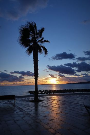 Palma City Beach Beauty In Nature Cathedral Cathédrale Notre-dame De Paris Cloud - Sky Day Dramatic Sky Mountain Nature No People Outdoors Palm Tree Playa Molinar Portixol Sea Silhouette Sky Sunset Tapas Club Tranquility Tree Water
