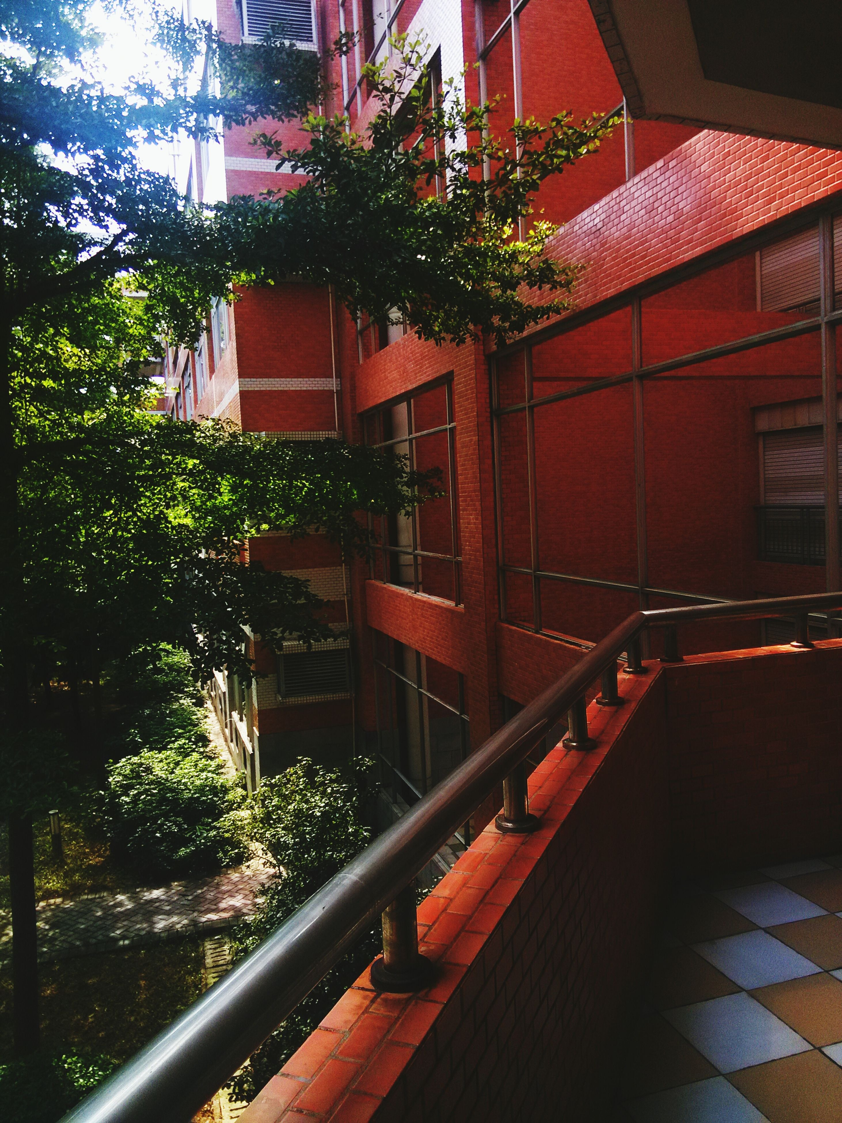 built structure, architecture, building exterior, railing, steps, staircase, steps and staircases, house, tree, residential structure, plant, residential building, red, growth, sunlight, outdoors, day, no people, balcony, the way forward