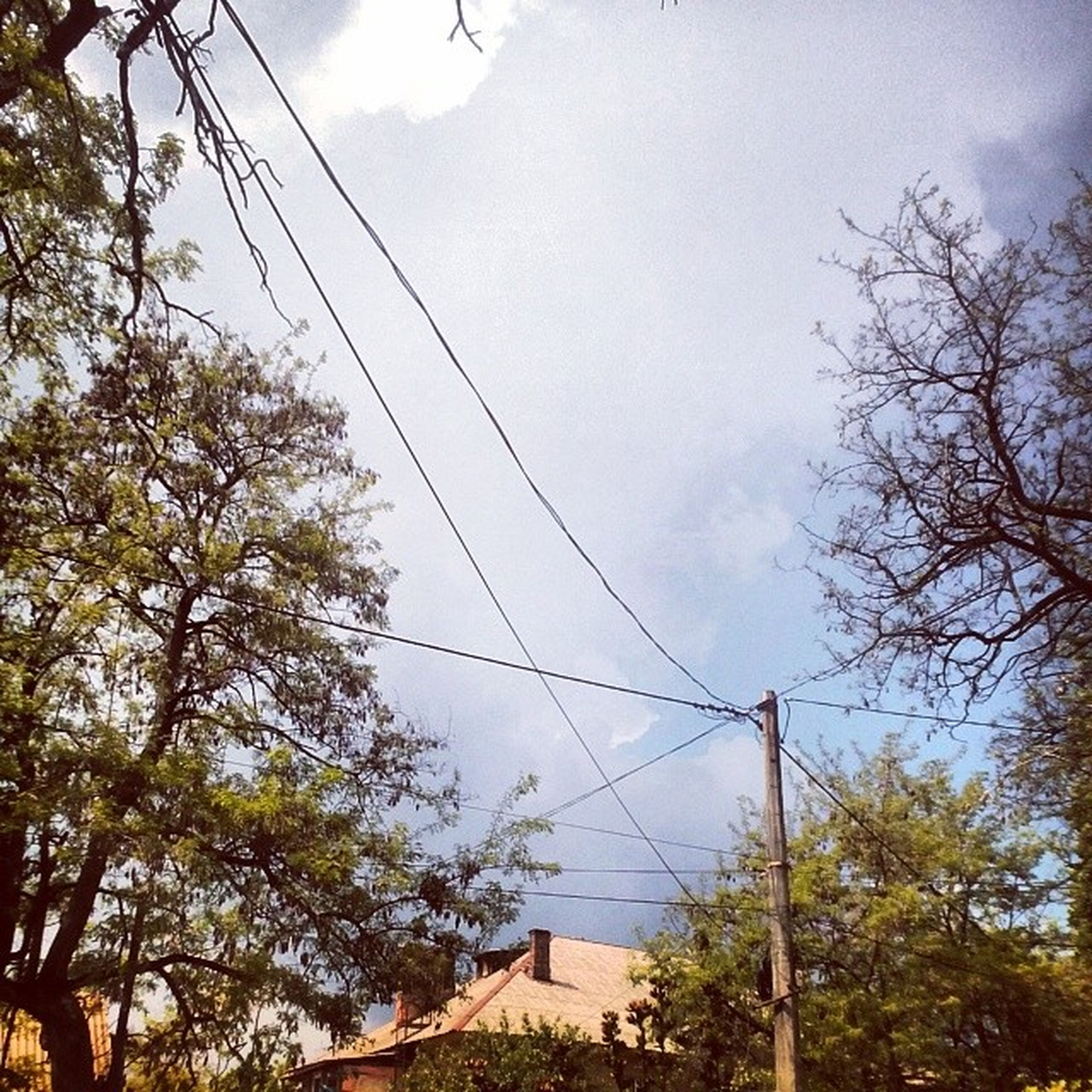 power line, cable, low angle view, tree, sky, electricity, electricity pylon, power supply, connection, fuel and power generation, built structure, architecture, technology, building exterior, power cable, cloud - sky, cloud, day, house, outdoors