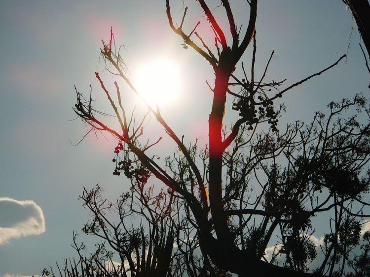 Eyemphotography Eyeembestshots Eyeembestedits Eyeem Sunset #sun #clouds #skylovers #sky #nature #beautifulinnature #naturalbeauty #photography #landscape Eyemphotography Antalya Samsung Smart Camera Samsungphotography Suliet
