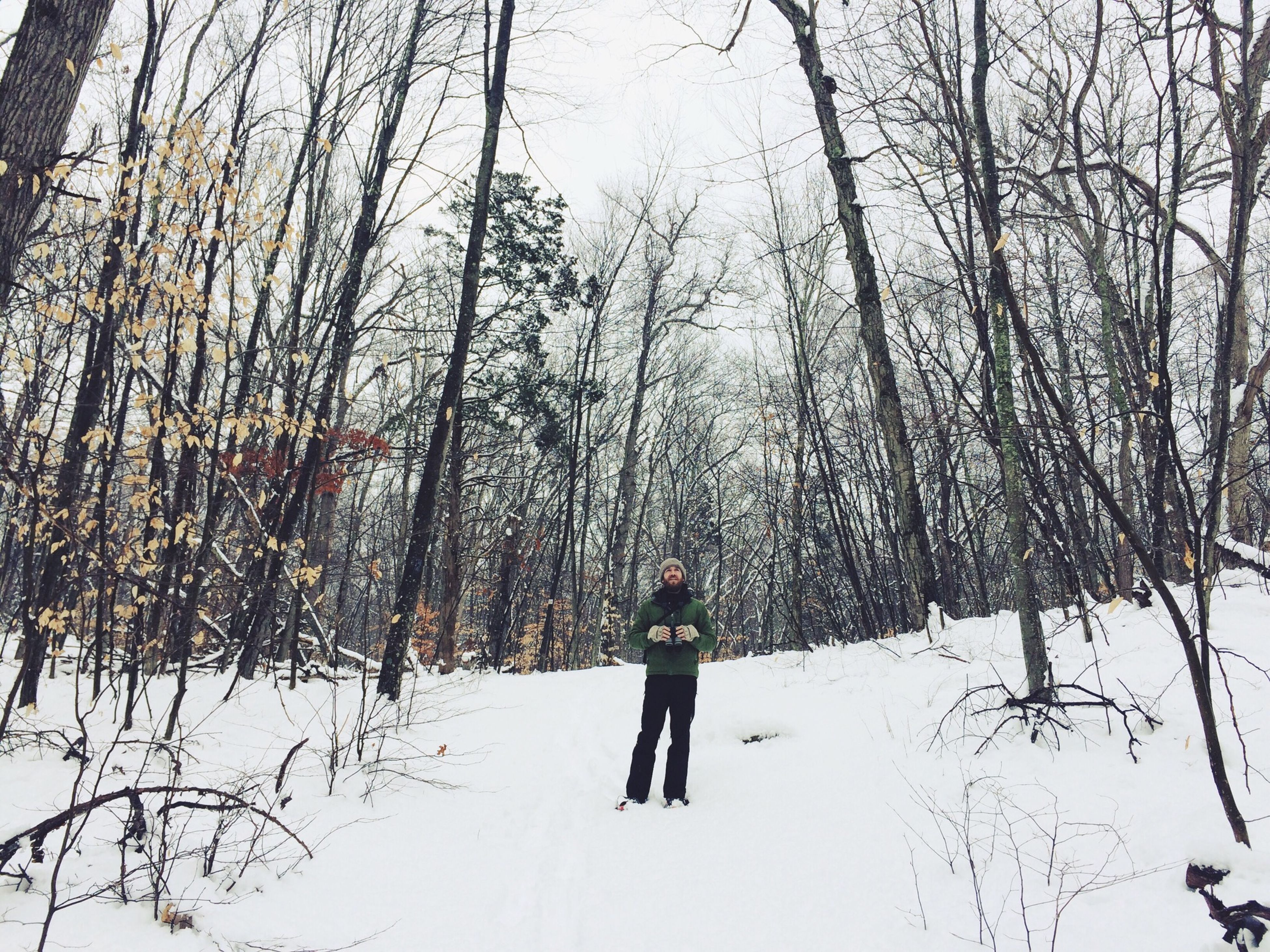 winter, snow, cold temperature, season, tree, lifestyles, full length, walking, bare tree, leisure activity, rear view, weather, nature, tranquility, men, branch, covering, tranquil scene