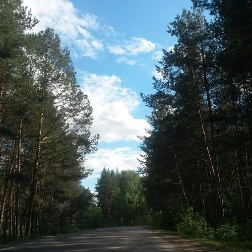 татарстан дорогадомой казань