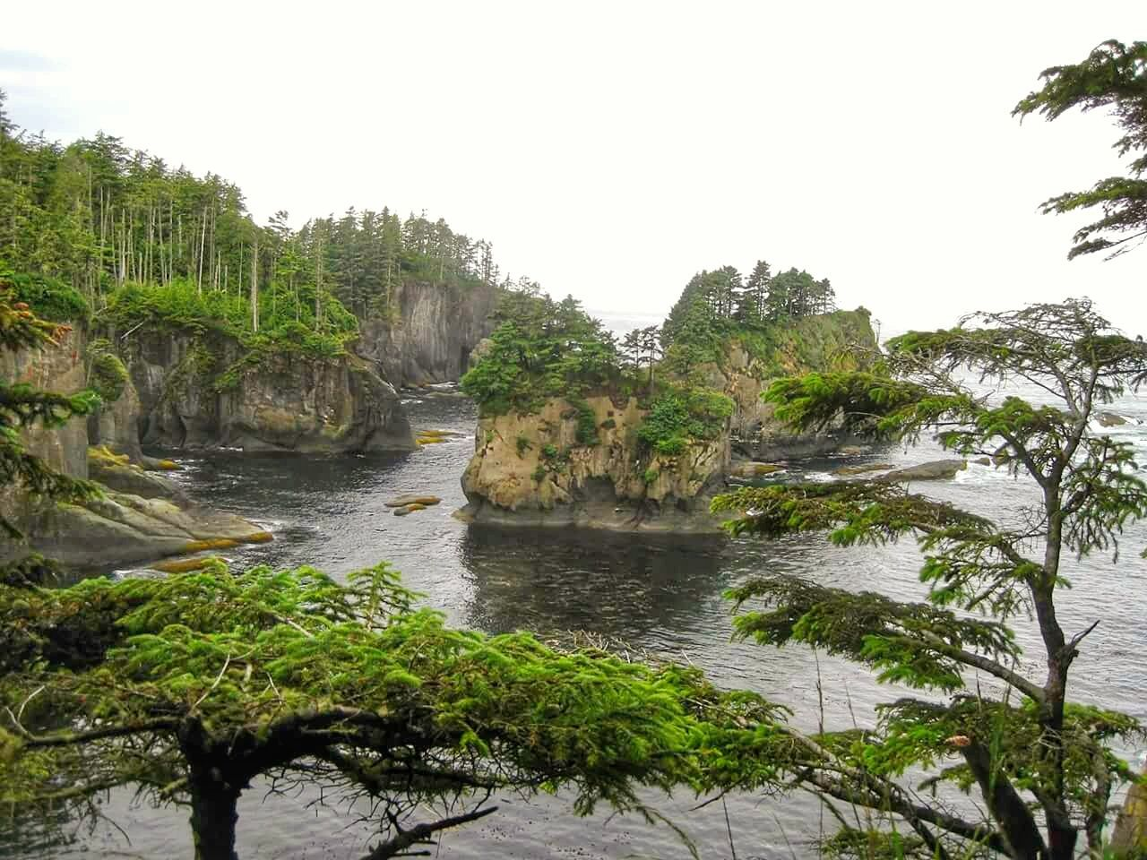 Northernwesternmost Point, Cape Flattery Washington Scenic Route Olympic Mountains Washington Back Roads Back Road Driving Ocean Landscapes With WhiteWall
