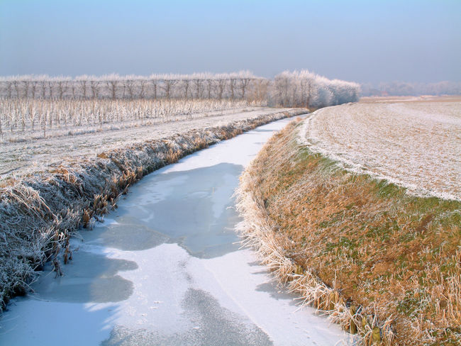 Beauty In Nature Blue Day Field Freezing Cold Grass Holland Horizon Ice Icy Idyllic Landscape Nature Netherlands No People Outdoors Rural Scene Scenics Sky Snow Tranquil Scene Tranquility Vanishing Point Water Winter