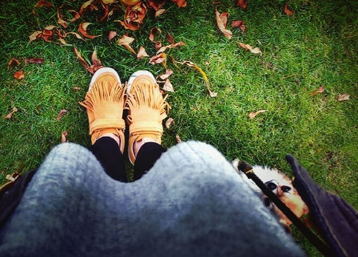 Grass Standing Shoeselfie Style Life Mystyle 😎 Fashion Atumn Is Coming Atumn Colors Personal Perspective Simplicity Person Human Body Part Nature Outdoors Garden Woman Portrait Getting Inspired Eyeemphotography