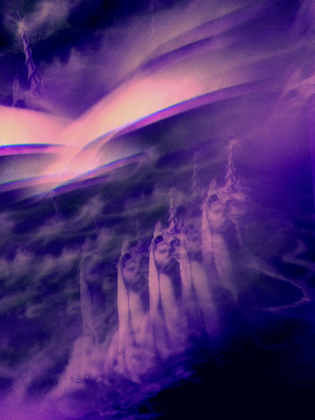 Abstract Unicornus Abstract Photography Experimental Fantasy Dreaming Fantasy Photography Purple The Visionary Unicorn Vision Close Up Technology MUR On EyeEm