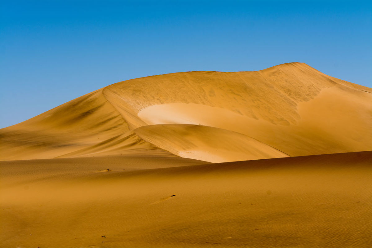 Africa African Arid Arid Climate Arid Landscape Beauty In Nature Desert Desert Landscape Deserts Landscape Namib Naukluft National Park Namibia Namibian Non-urban Scene Physical Geography Sand Sand Dune Sand Dunes Southern Africa Swakopmund Tranquil Scene