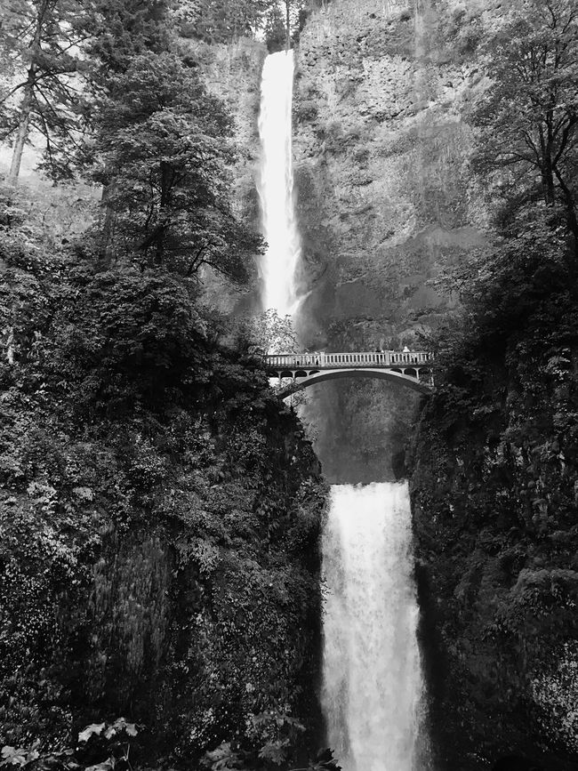 Monochrome Photography Multnomah Falls  Oregon Beautiful Beauty In Nature Gorgeous Flowiing Water Waterfall Nature Black & White