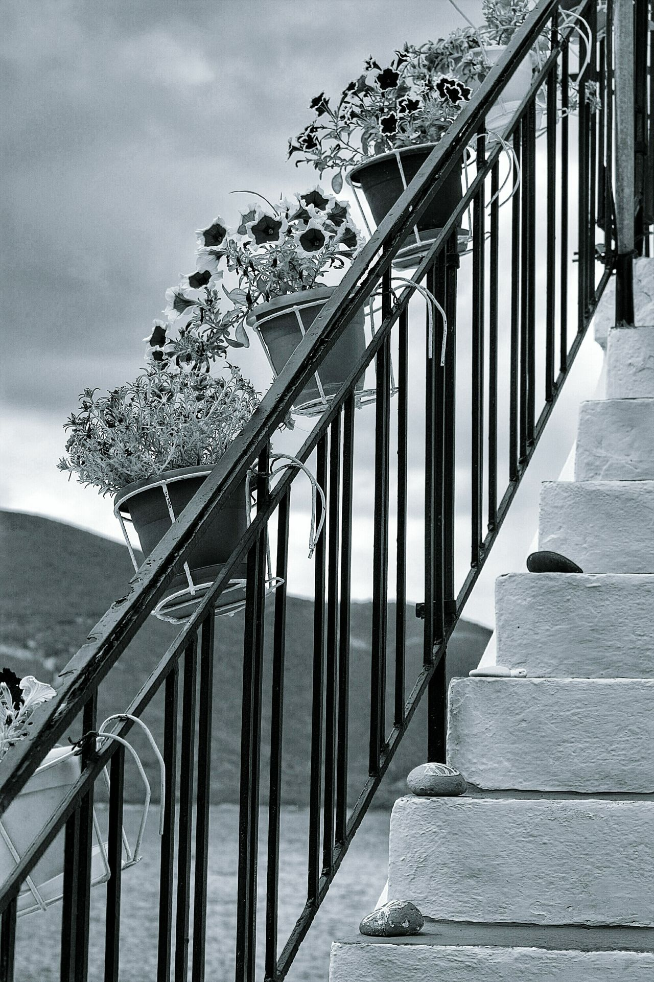 Monochrome Photography Silhouettes Silence Moment Enjoying Life Tourism Scenics No People Outdoors Enjoy The View Capture The Moment Black & White Black And White Greece Greece2016 Eyeem4photography EyeEm Gallery Stimmungsbild Hello World Wonderful Moment Railing Built Structure Flower Plant Pot Mood Of The Day Enjoying The Moment