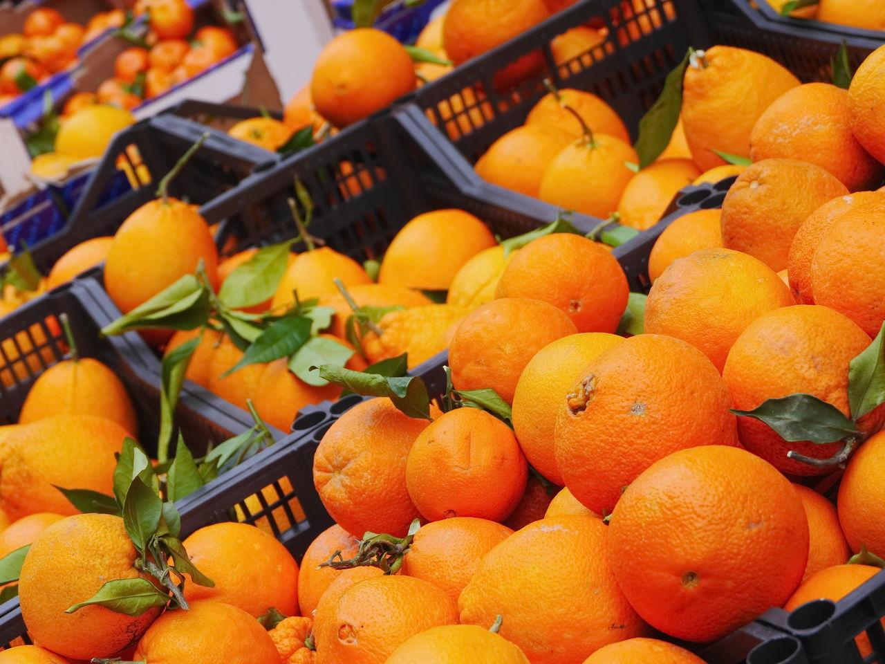 Abundance Close-up Day Farmer's Market Food Food And Drink Freshness Fruit Healthy Eating Healthy Lifestyle Leaf Market Market Stall No People Orange - Fruit Orange Color Outdoors Pumpkin Retail