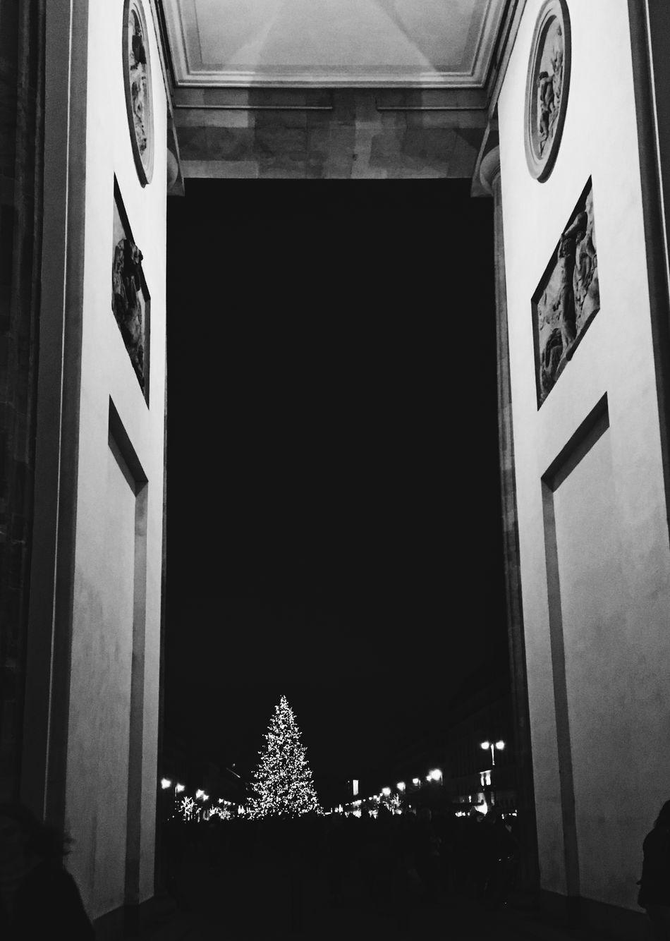 Architecture Arts Culture And Entertainment Blackandwhite Brandenburg Branderburgertor Christmas Christmas Lights Christmas Tree Night Xmas