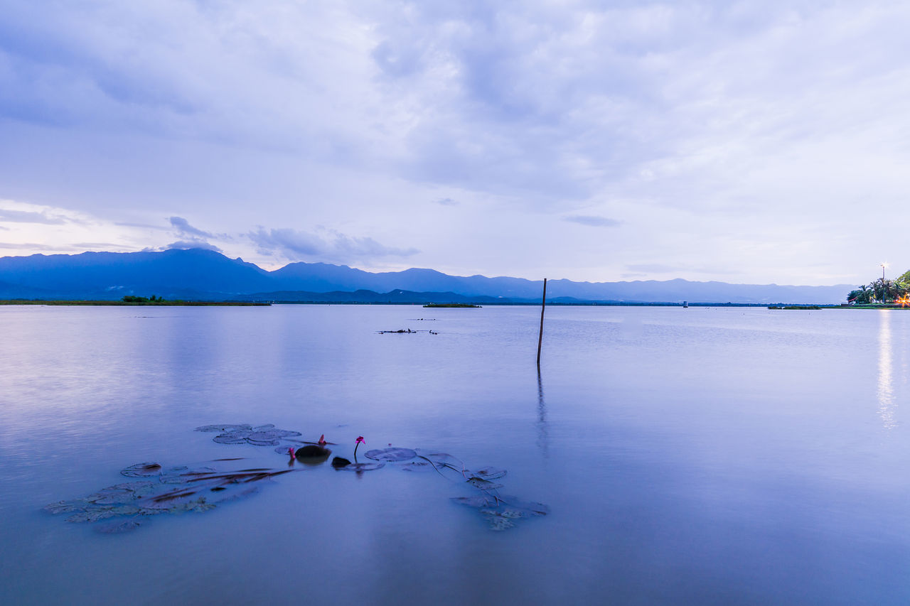 PHAYAO, THAILAND - JULY 19, 2016: The bamboo bridge, The bamboo bridge of Wat Ti Lok Aram temple in kwan phayao off freshwater lake of Thailand. Day is the important Buddhist. ASIA Bamboo Bridge Beauty In Nature Buddhist Cloud Cloud - Sky Idyllic Important Kwan Phayao Lake Leisure Activity Mountain Mountain Range Nature Non-urban Scene Outdoors Reflection Scenics Sky Temple Thailand Tranquil Scene Tranquility Wat Ti Lok Aram Water
