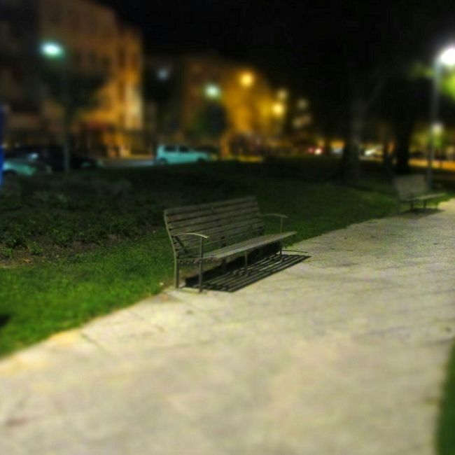 Park Bench Autumn Night Pinhal Novo Alone In The Dark Eyem Best Shots Eyem Gallery Check This Out EyeEm Best Shots Cities At Night Selective Focus Park - Man Made Space Park Benches Street Photographer-2016 Eyem Awards Absence No People Bokeh Loneliness Alone Walking Around Relaxing Green Grass Tranquility Tranquil Scene EyeEm Gallery Eye4photography