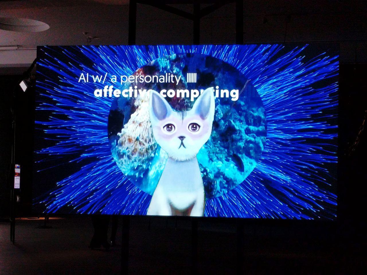 Transmediale AI Kitten Dictator Cute