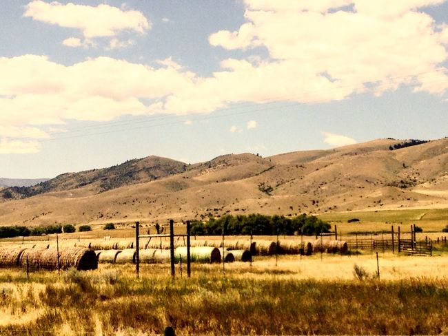 Scenic farmland Mountains Farmland Field Hays Trees Scenic Drive Road Trip Montana Colour Of Life Clouds And Sky Color Palette Eyeemphoto