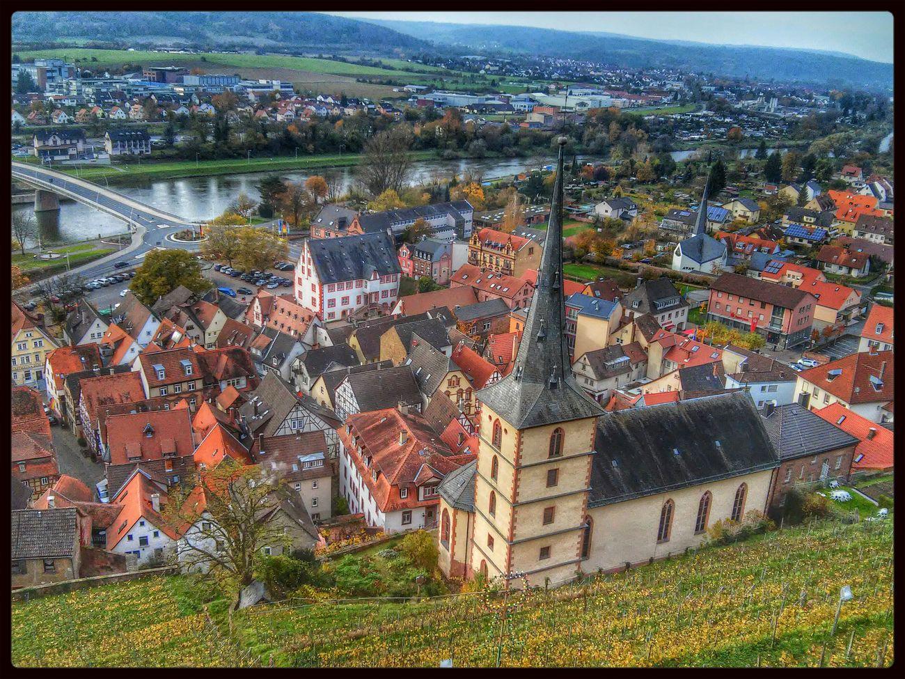 Autumn Colors in Klingenberg um den Herbst In Seinen Schönsten Farben zu genießen. Wineyard