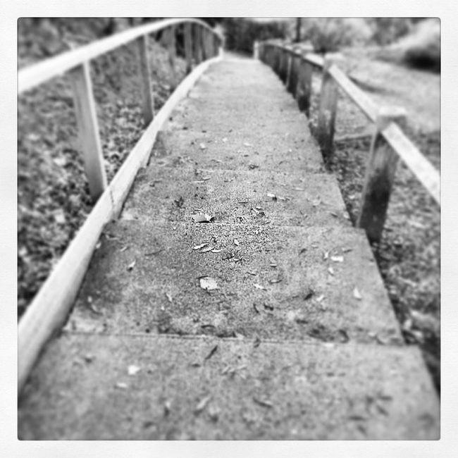 Go ! Gouvieux Escalier