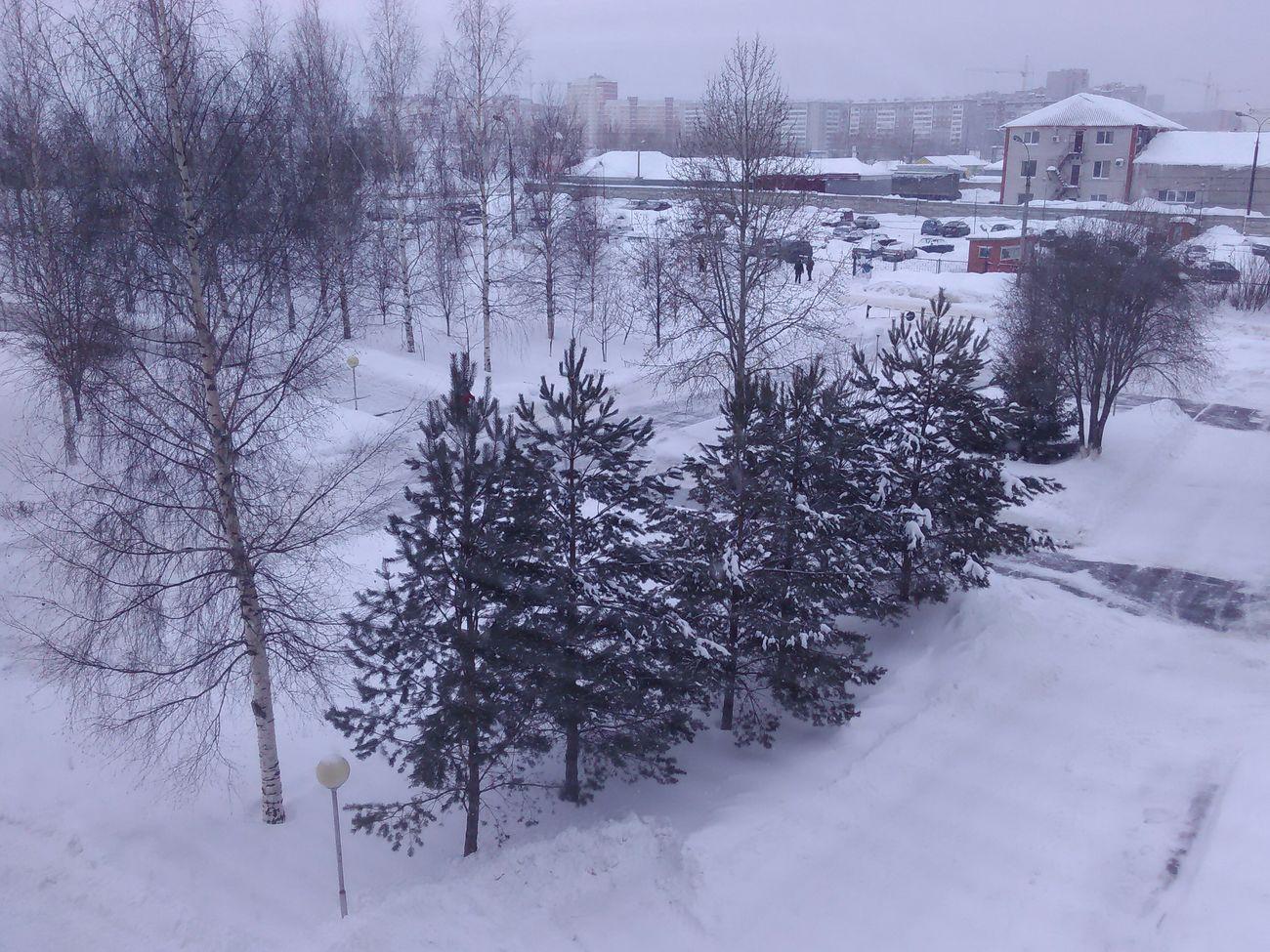 Nature снег пошел City
