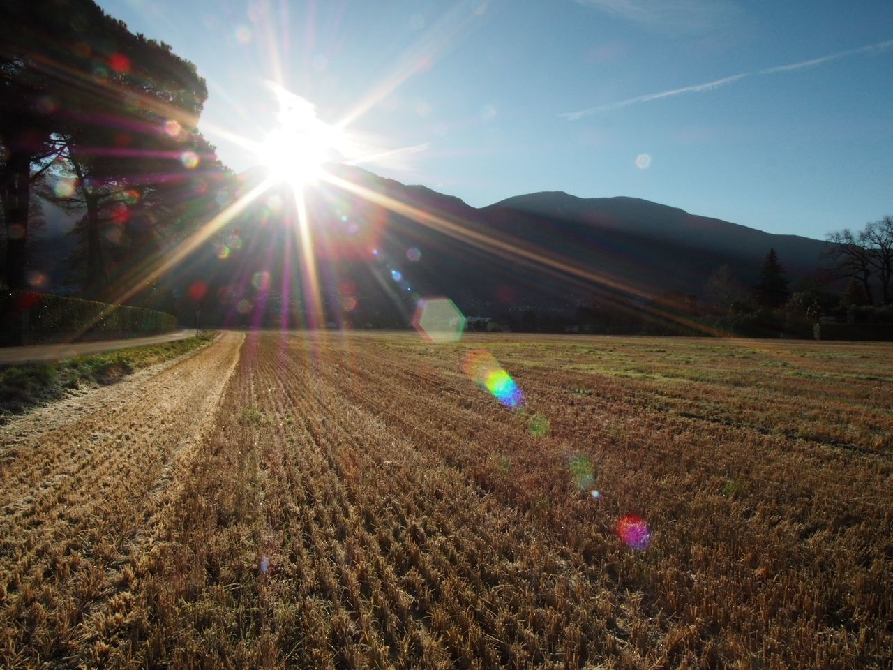 Beauty In Nature Day Field Field Landscape Lens Flare Mountain Mountains Nature No People Outdoors Scenics Sky Sun Sunbeam Sunlight Tranquil Scene Tranquility Wheat Wheat Field