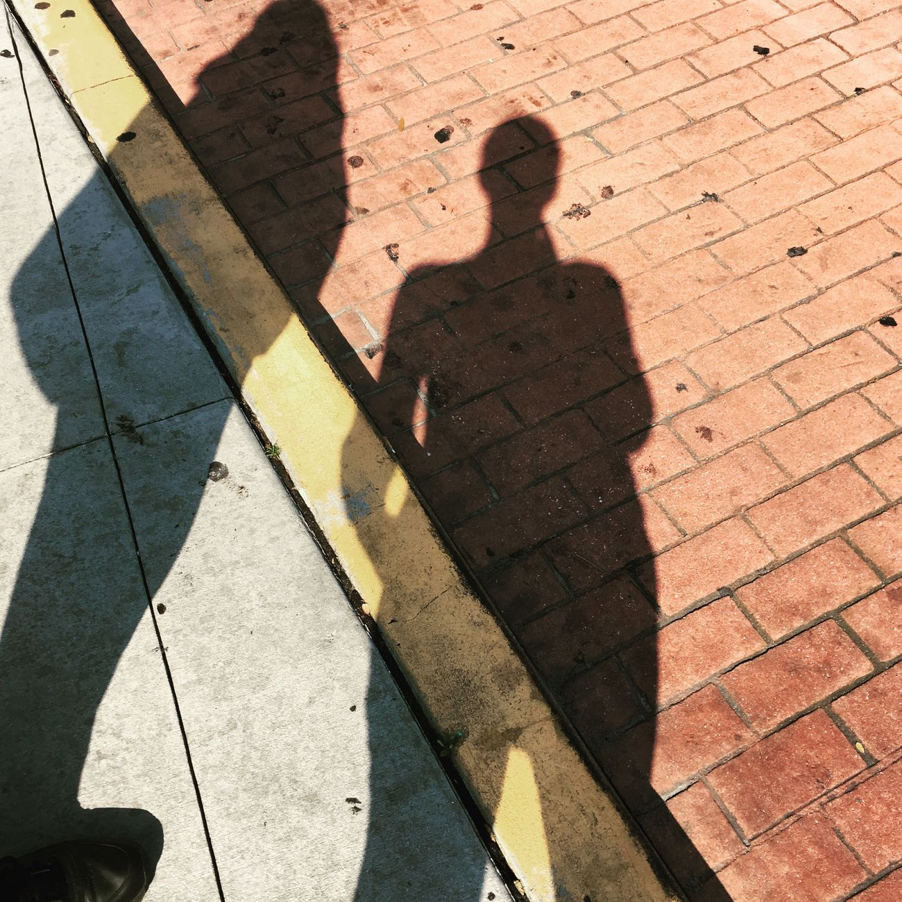 Shadow Focus On Shadow Outdoors Day Florida Downtown Tampa Yellow City Colorblocking Yellow Line Bus Stop Waiting