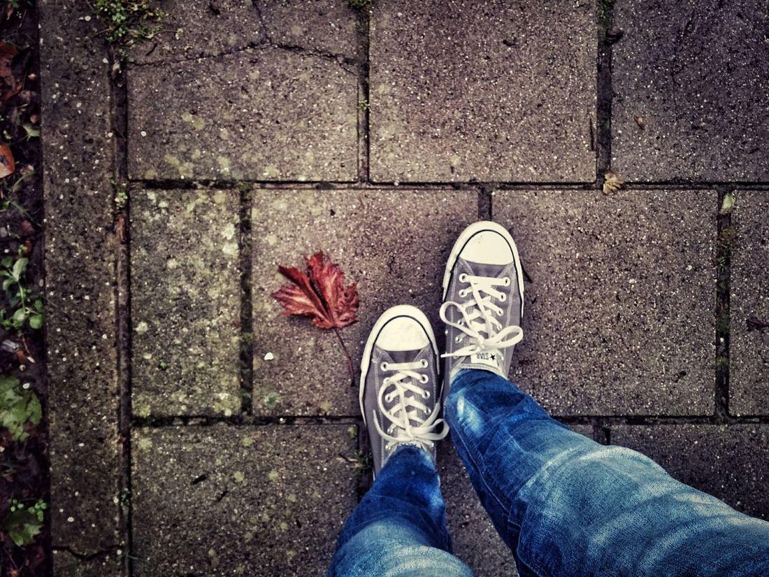 Start of Autumn Autumn Autumn Leaves Nature Minimimalist Converse Changeofseason Streetphotography Pavement