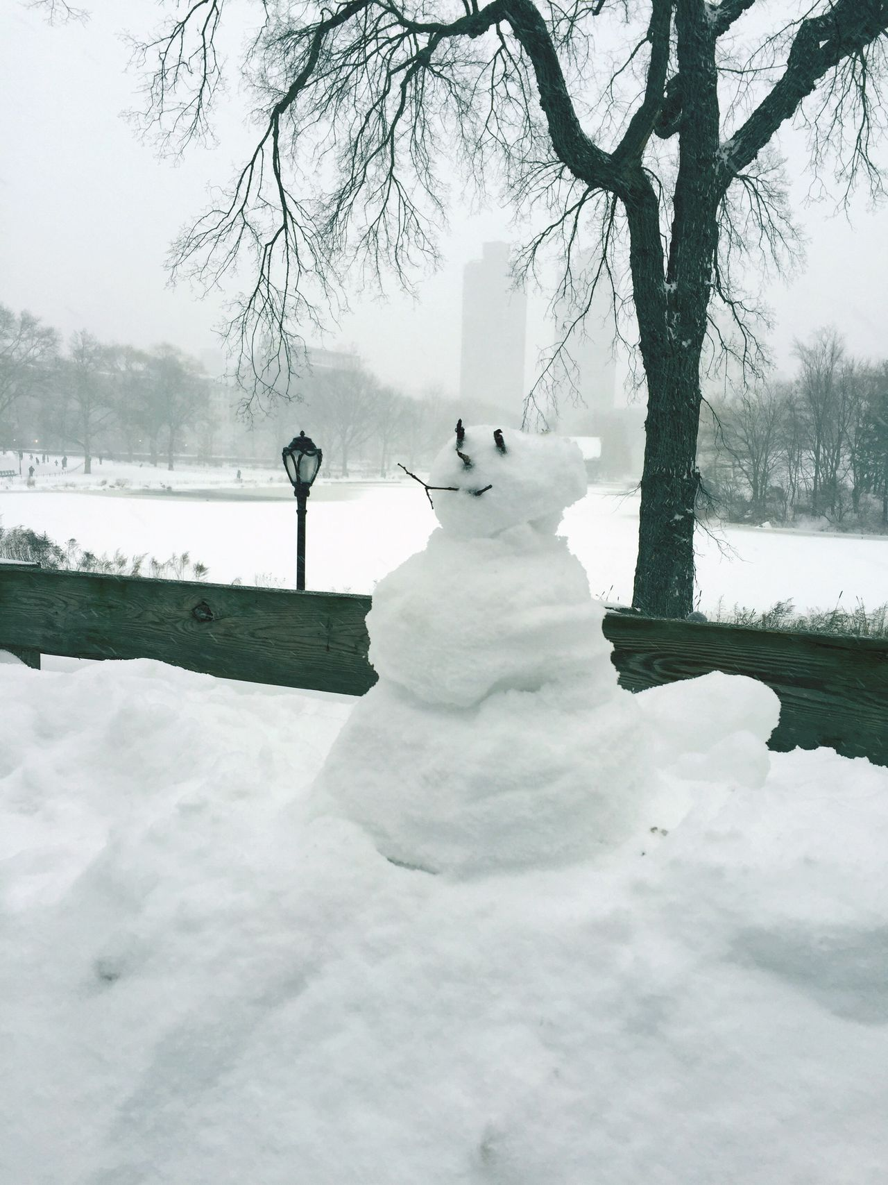 Blizzard 2016 Jonasblizzard New York City