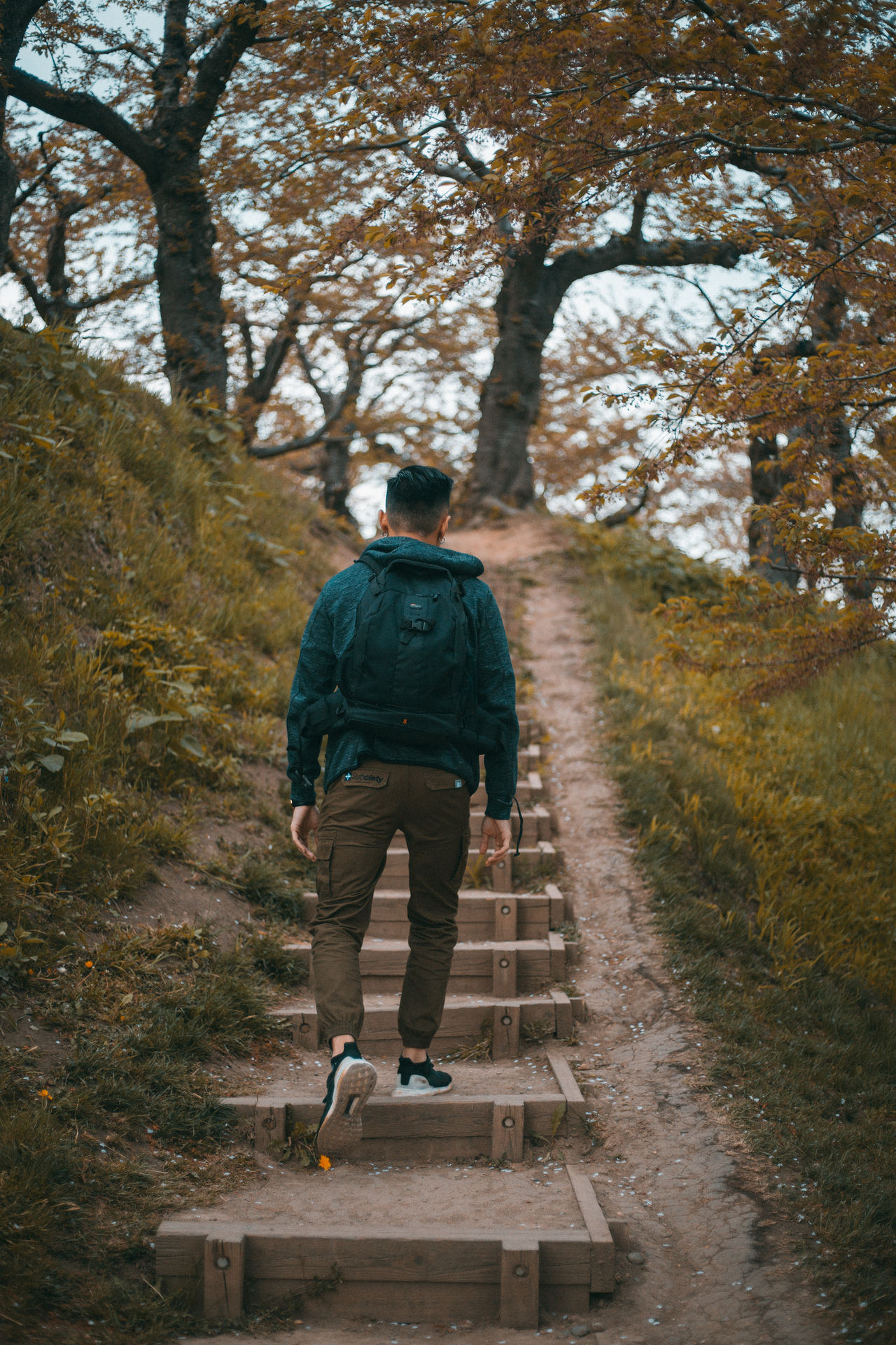 Autumn Backpack Camera Bag Casual Clothing Day Full Length Hiking Leisure Activity Lifestyles Nature One Person Outdoors People Real People Rear View Sky Sneakers Travel Tree Trekking Walking Wanderlust