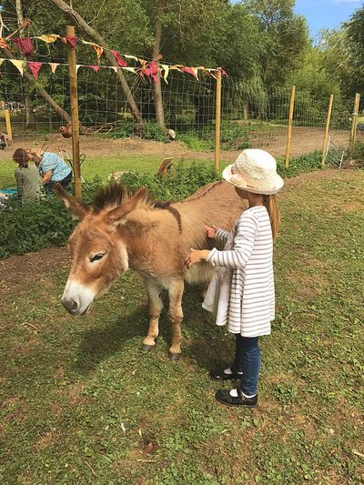 Small child with small Donkey. Togetherness Small Child Donkey Outdoors Summer Childhood Sun Hat Summer Fair Bunting Sommergefühle Let's Go. Together. EyeEm Selects English Summer Cute Animals Sweet Moments Vintage Fair Breathing Space Investing In Quality Of Life