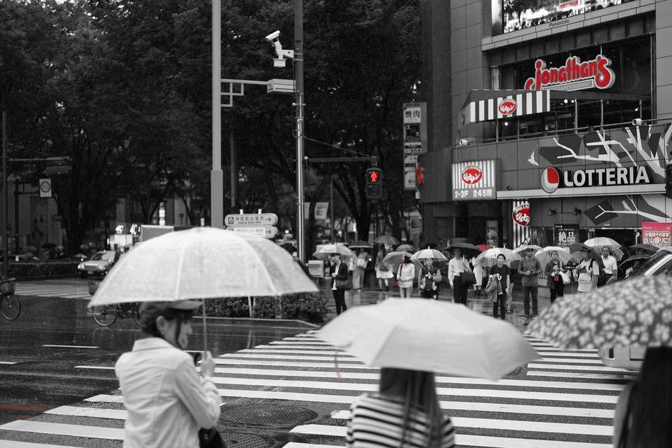 ファインダー越しの私の世界 写真好きな人と繋がりたい Zeiss Streetphotography パートカラー Colorsplash Rainy Days Rainy