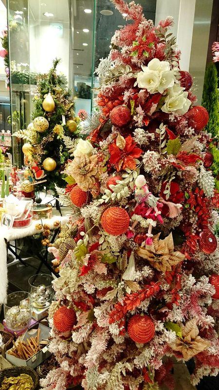 Xmas Tree Merry Xmas!