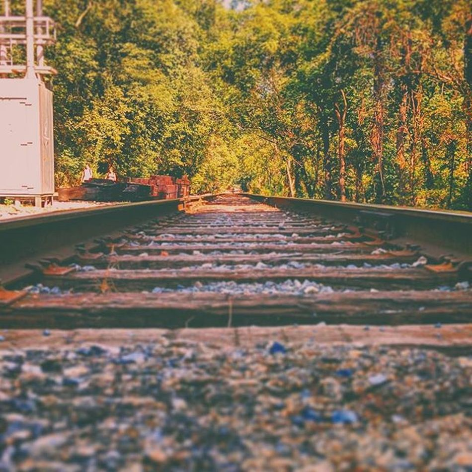 Had a nice family picnic to finish our Labordayweekend . This abandoned train track was on our hiking trail do I decided to take a picture, turned out pretty epic. Family Picnic Laborday Hiking Trails Shenandoah Harpersferry Oldtowntrail Miles Water Rapids Skippingrocks Railroad Tracks Train Falliscoming Intothefuture Nexus Instadaily Ztprod