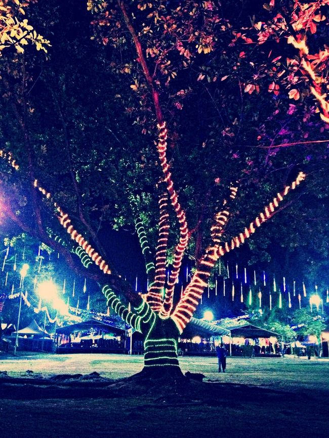 """October magical tree"""