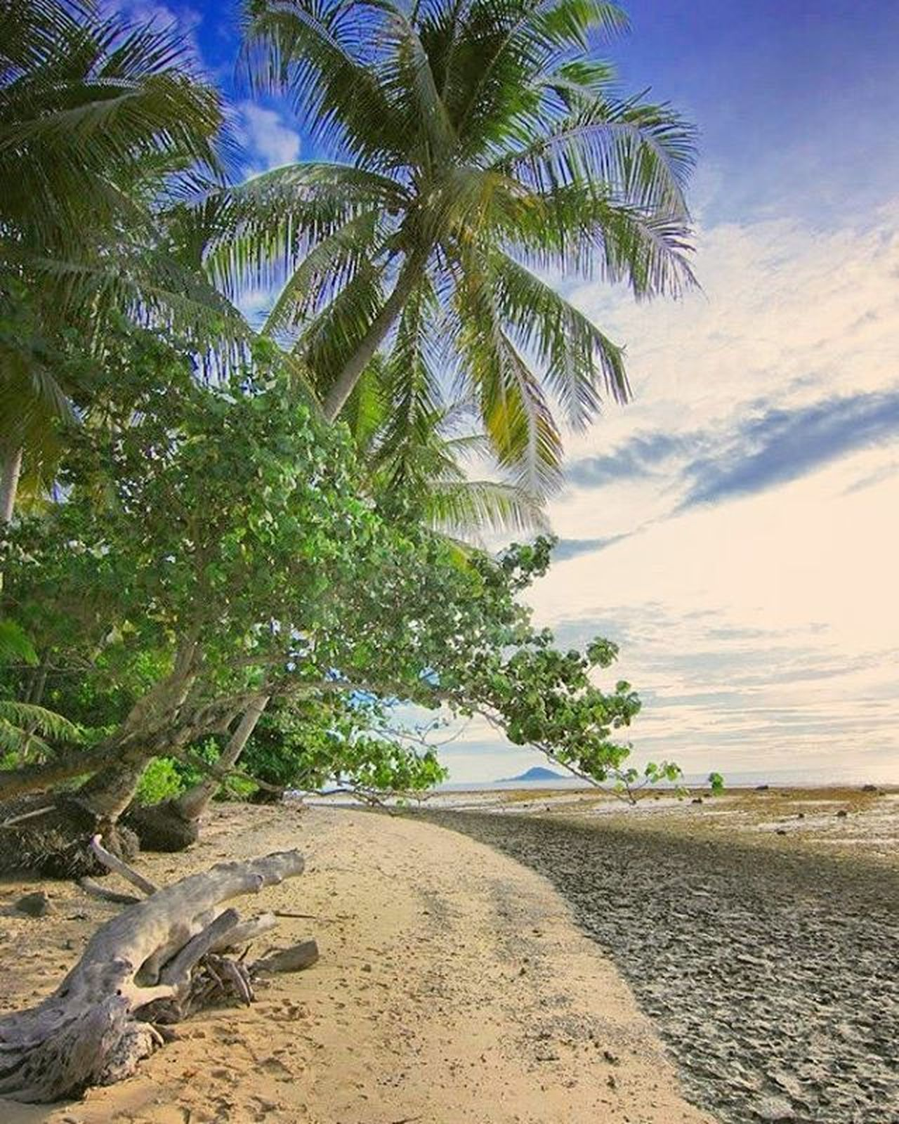 Kesepian dalam keindahan bukan berarti dalam posisi terpuruk... Semua membutuhkan proses dan waktu untuk penyesuaian... . Location : Pulau Cingkuak, Painan . . . Exploresumatra ExploreSumatraBarat ExploreSumbar Adventuresumbar Potretsumbar Okesumbar Sumbar_oke Sumbar_rancak ExploreMinang Minangrancak Pesisirselatan