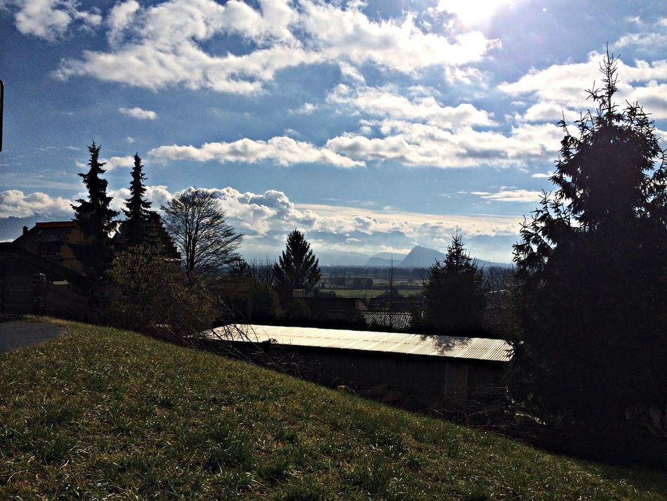 Sun Rheintal Marbach February