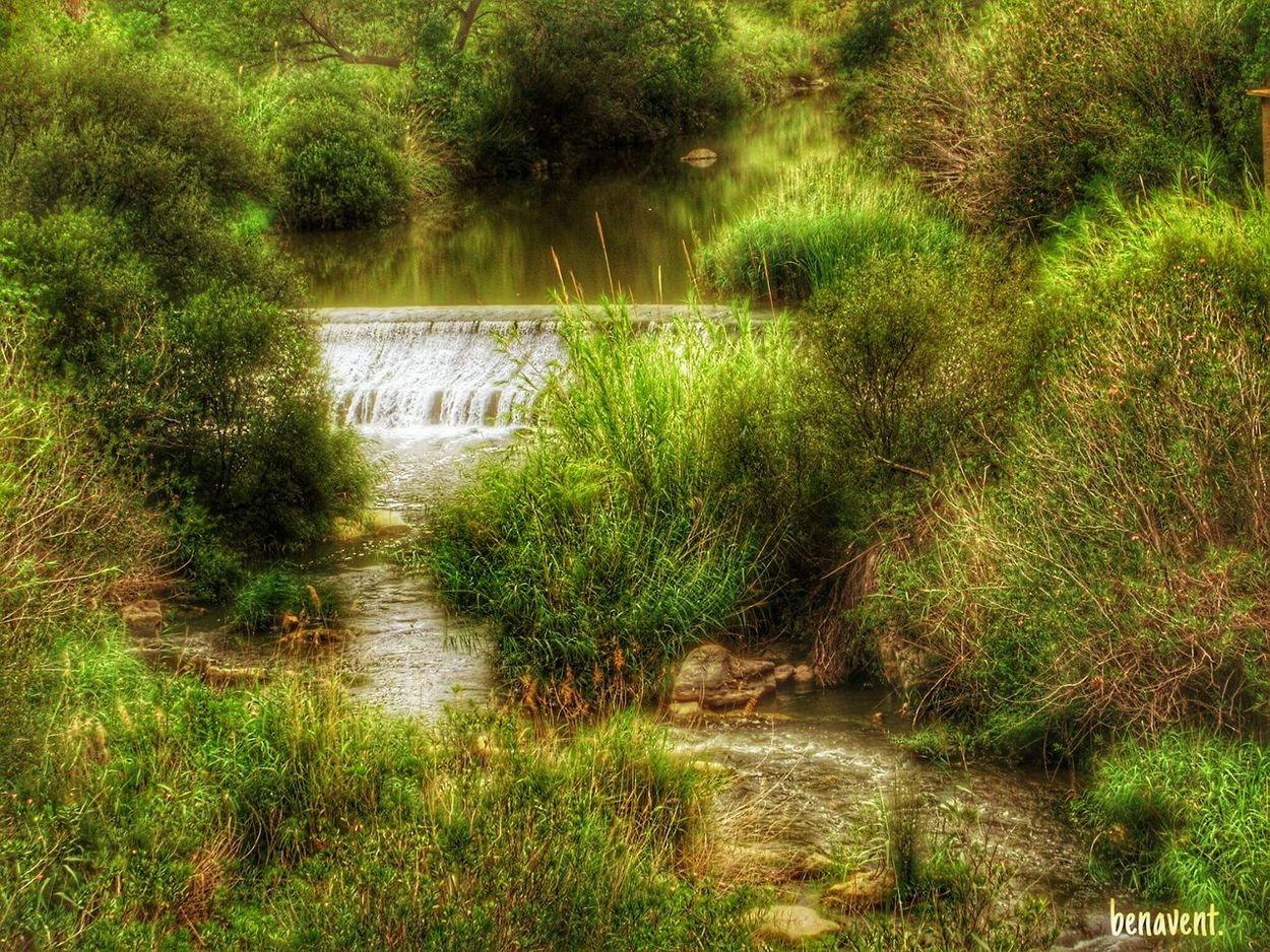 Serpis Via Verda Senderisme Senderismo Assut País De L'olivera Riu River Via Verde